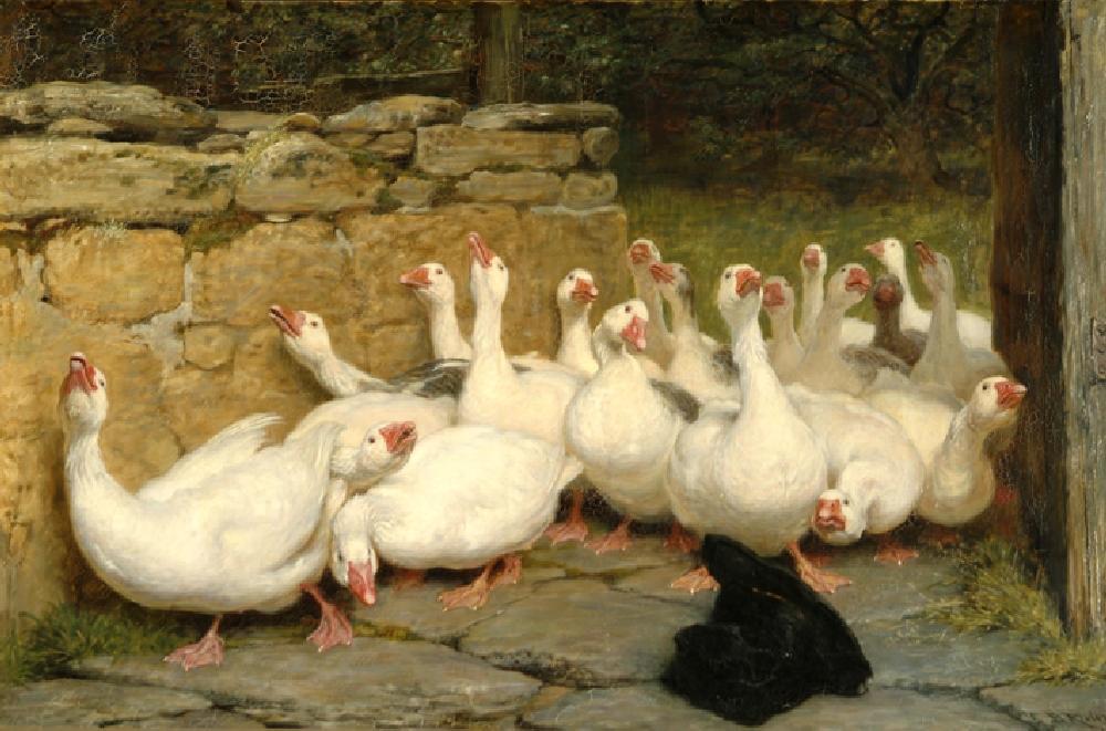 Animal Paintings at Royal Holloway